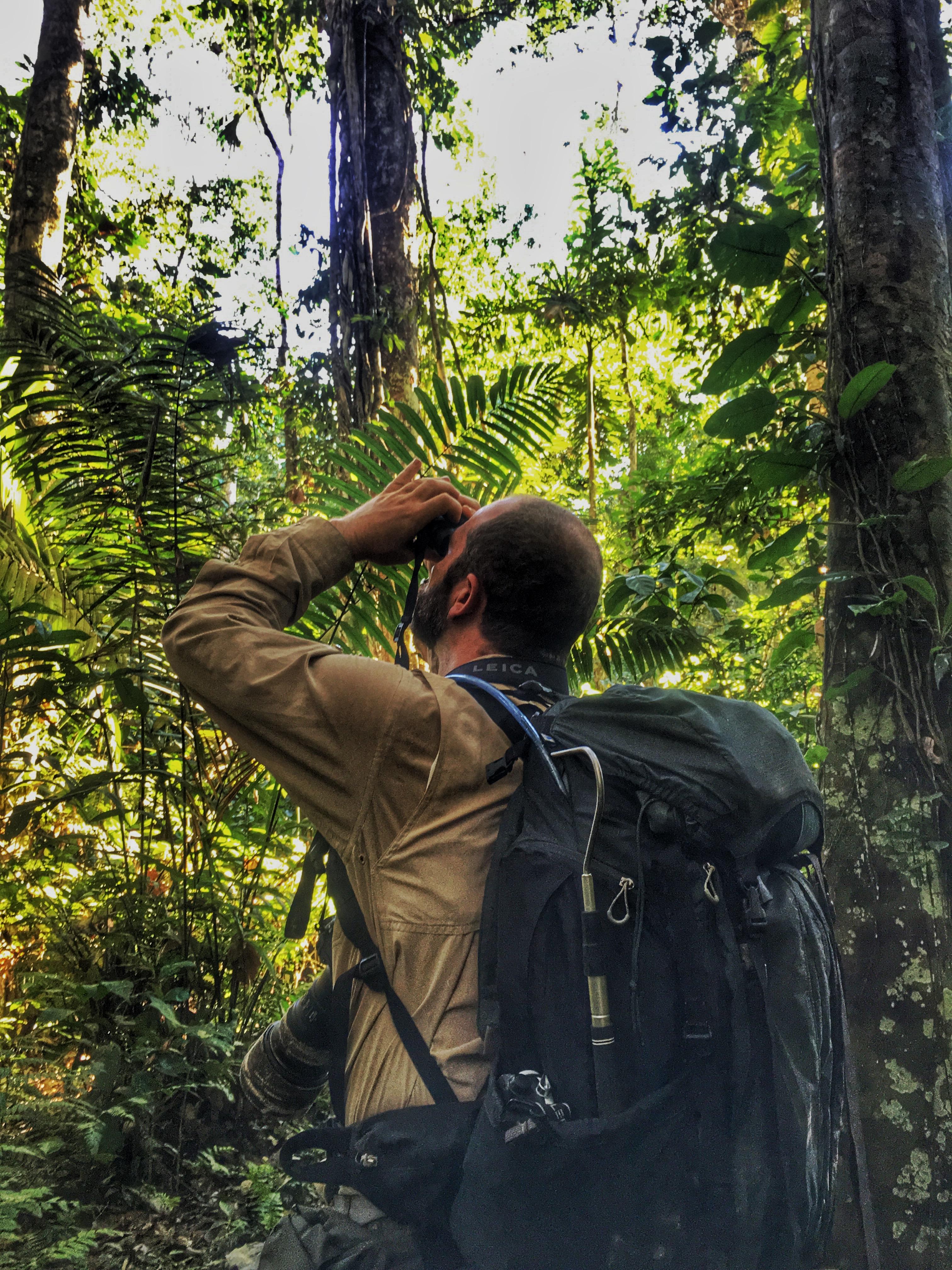 Emanuele tra le umide foreste pluviali del Perù. Per l'Ultravid 8x32HD-Plus nemmeno le piogge torrenziali sono state un problema.