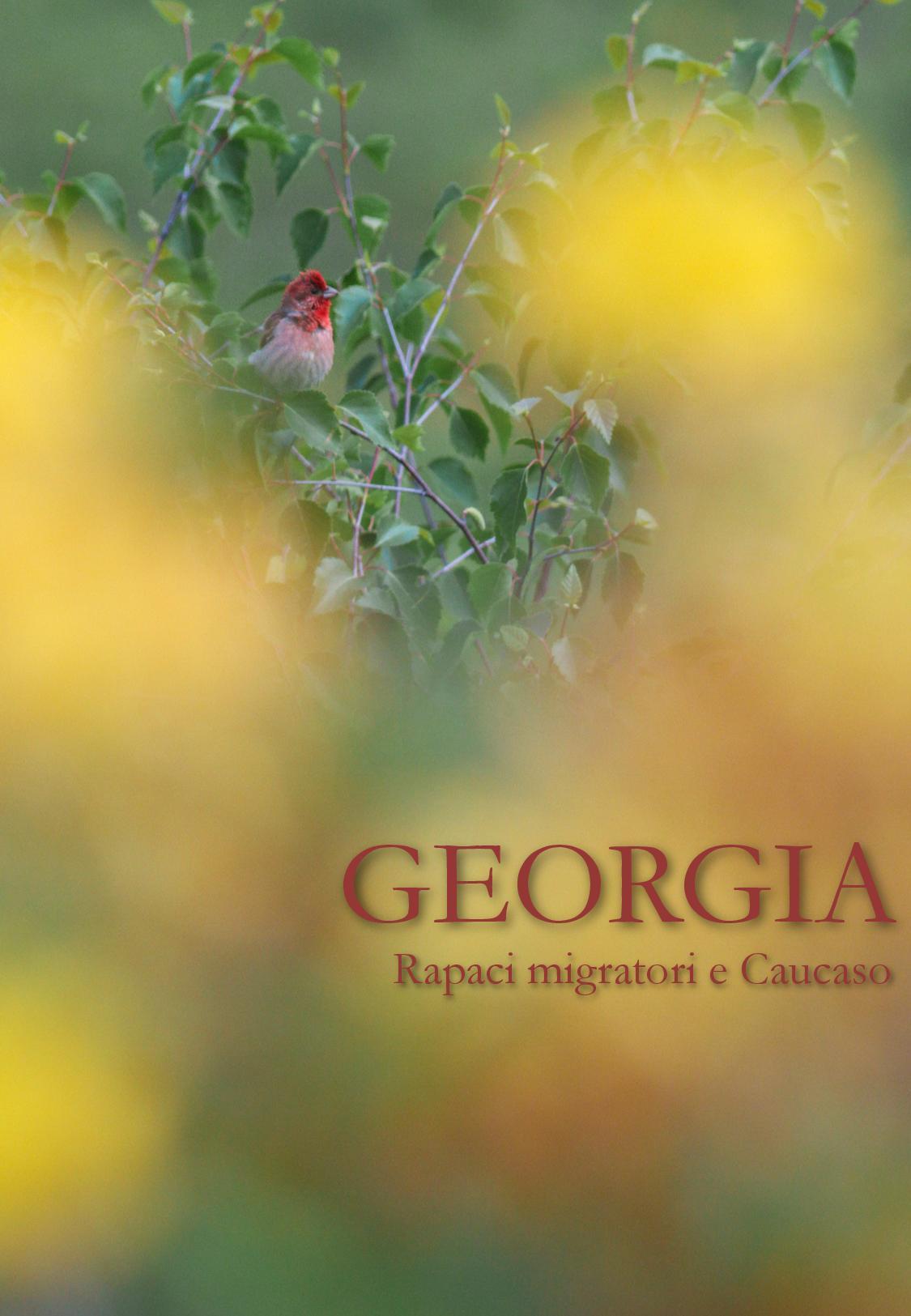Georgia 2017-page-001