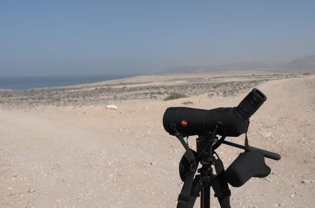 Apo Televid 82 con oculare 25-50ww Fuerteventura