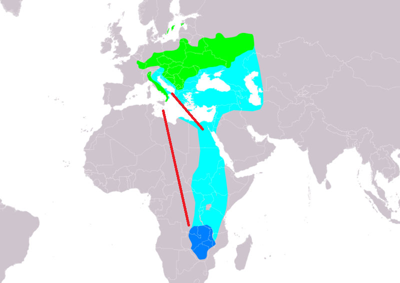 Mappa degli spostamenti delle Balie dal collare – in verde l'area di riproduzione, in blu scuro  le aree della migrazione invernale e in azzurro le aree di avvistamento. Le linee rosse rappresentano i movimenti migratori verso l'Italia.