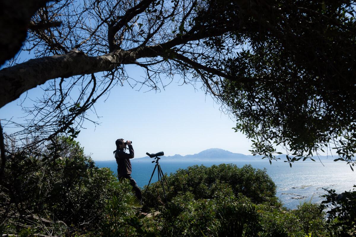 Ugo Mellone, Tarifa, Spagna Leica Natura noctivid apo televid osservazione