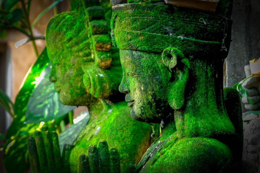 Statue di Buddha- Bali | Fotocamera Leica V-Lux 3 binocolo leica Tatiana Chiavegato Leica Natura